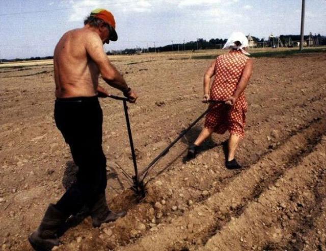aşa e agricultura la noi