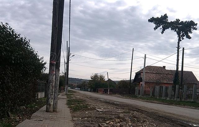 IMG_20141026_143132